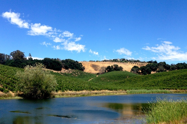 This body of water is key to the life of the vineyards at Truchard.